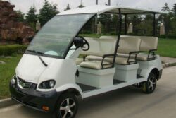 Stylish Golf Carts